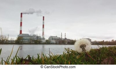 Autumn Industrial landscape - thermal power plant over the river, ecology concept, flowers and grass in the foreground