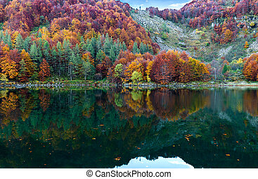 autumn is reflected in the water