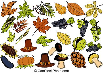autumn items for Thanksgiving in the vector