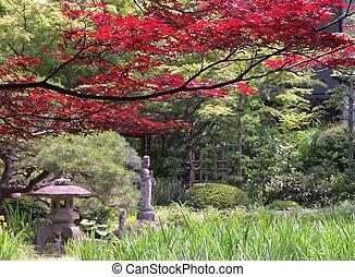 Autumn Japanese garden
