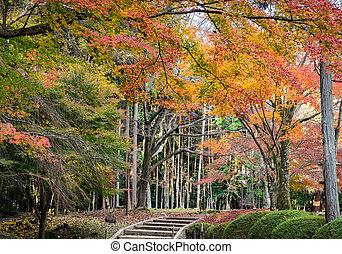 Autumn Japanese garden in Daigoji temple. Kyoto, Japan