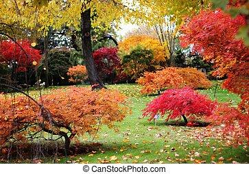 Japanese style garden in autumn