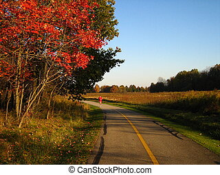 Autumn Jog - A picture of a man running during autumn.