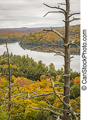 Autumn Lake and Dead Pine - Ontario, Canada
