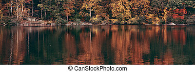 Autumn Lake