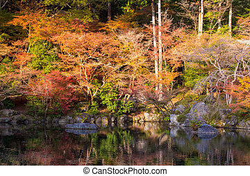 Autumn lake garden