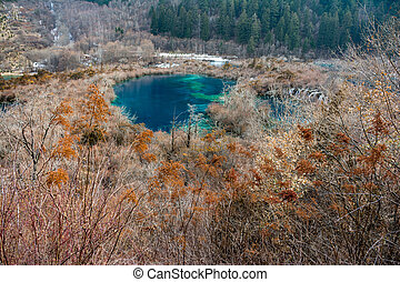 Autumn lake Jiuzhaigou in the bushes