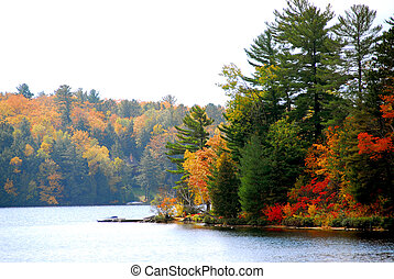 Autumn lake - Lake and forest in the fall in northern ...