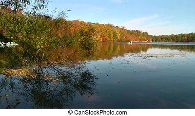 autumn lake paddle boat
