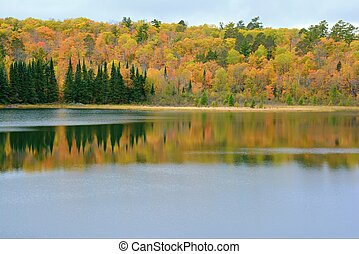 Autumn Lake Reflections In Itasca State Park - MN - Colorful...