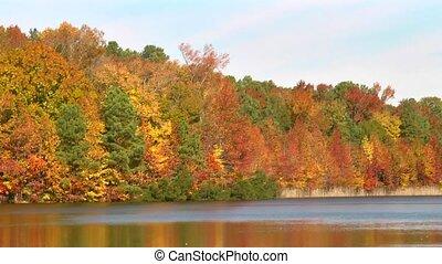 autumn lake tilt