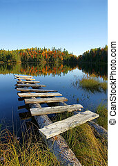 Autumn lake vertical
