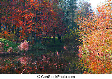 autumn lake with color forest