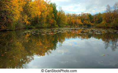 Autumn lake with reflections