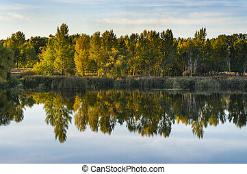 multi-colored forest reflected in the water