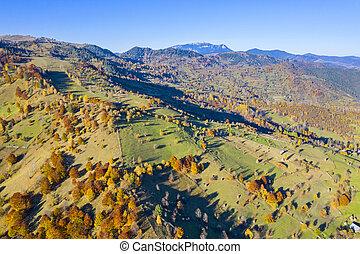 Autumn landscape, aerial view