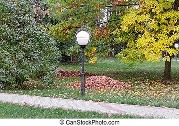 Autumn landscape: autumn in the Park.