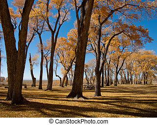 Autumn landscape at Zapata Ranch, Colorado.