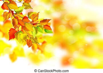 Autumn landscape. Beautiful autumn leaves. Golden autumn.