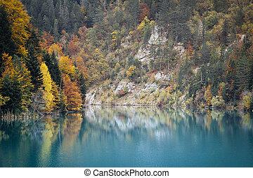 Autumn landscape. Composition of nature.