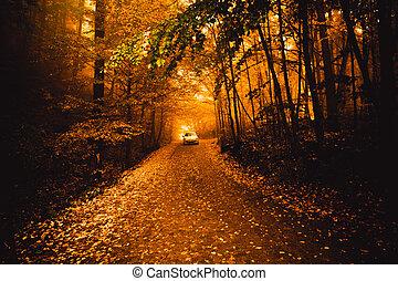 Autumn landscape image, Bolu, Turkey.