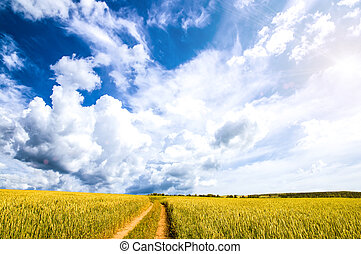 Autumn landscape in a field with clouds