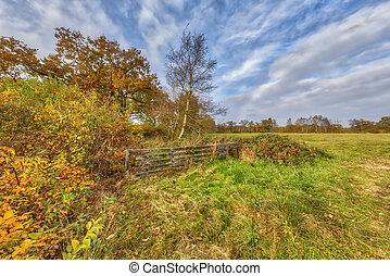 Autumn landscape in Drenthe - Autumn landscape with yellow...