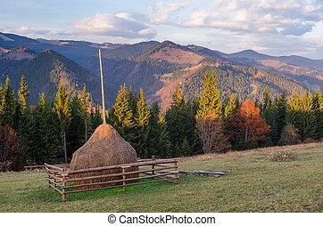 Autumn landscape in mountain village