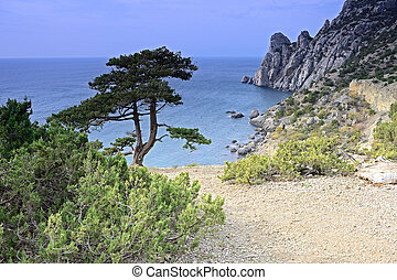 Autumn landscape in the Crimea