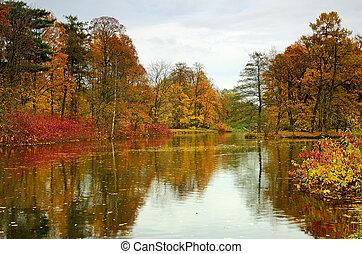 Autumn landscape in the park