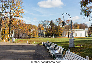 landscape in the park