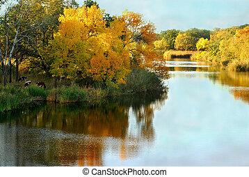 Autumn, landscape, near the river