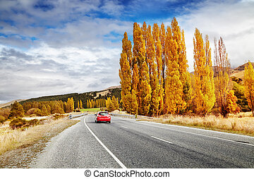 Autumn landscape, New Zealand - Autumn landscape with road...