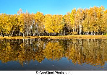 Autumn landscape on lake