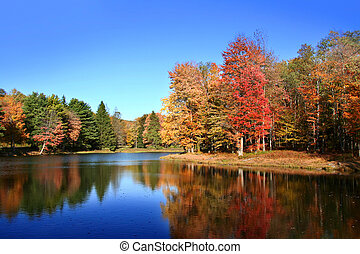 Autumn landscape - Colorful tree reflections in beautiful...