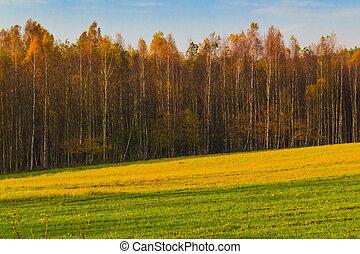 Autumn landscape view fields woods fall colors