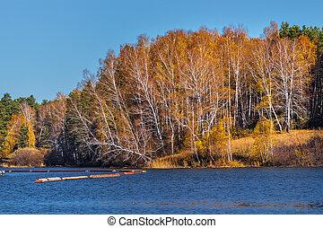 Autumn landscape. Western Siberia - Autumn landscape on a ...