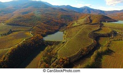Autumn landscape with a bird's eye view, fields, forest,...
