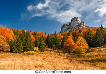 Autumn landscape with a blue sky with puffs, rocks and trees in fall colors in the national park Mala Fatra, Slovakia, Europe.