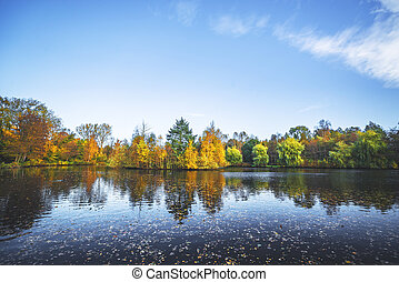 Autumn landscape with a lake and trees