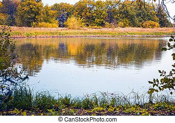 Autumn landscape with a lake