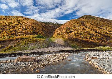 Autumn Landscape with a mountain river and birch forest