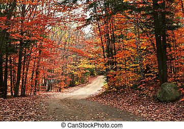Autumn landscape with a path