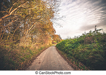 Autumn landscape with a road