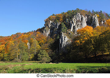 autumn landscape with colorful forest and calcareous rocks