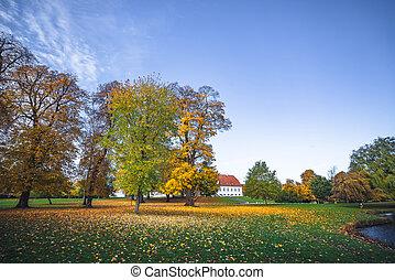 Autumn landscape with fallen leaves