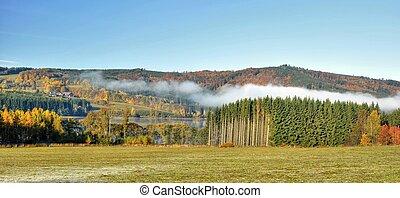 Autumn landscape with fog