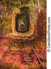 Autumn landscape with railway