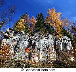 autumn landscape with rock