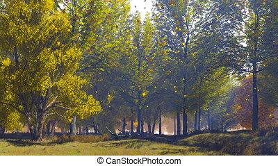 Autumn landscape with scenic trees on forest edge - Peaceful...